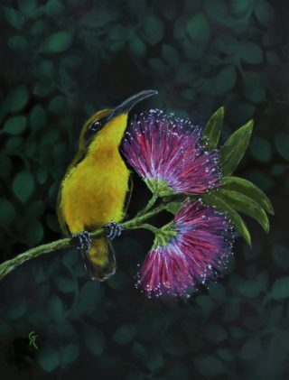 An Acrylic painting by Geraldine Taylor in the Illustrative style  depicting Birds with main colour being Black Pink and Yellow and titled Golden Girl