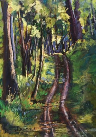 A Pastel painting by Janette Humble in the Realist Impressionist style  depicting Bush Hills and Outback with main colour being Green Purple and Yellow and titled Along the Track