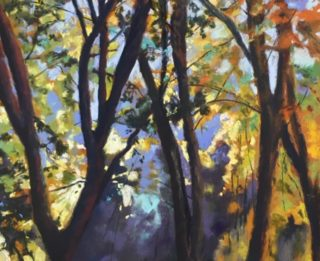 A Pastel painting by Janette Humble in the Realist Impressionist style  Bush Garden and Rural with main colour being Orange Purple and Yellow and titled Dappled