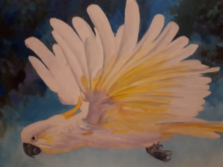 An Oil painting by Halina Kobialka in the Realist style  depicting Birds with main colour being Grey White and Yellow and titled Cockatoo