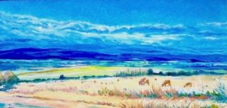 An Oil painting by Halina Kobialka in the Realist style  depicting Landscape Rural with main colour being Blue Cream and Orange and titled Morning mist at the field