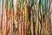 Margaret Morgan Watkins-201-Through the Forest-OzArt Finder