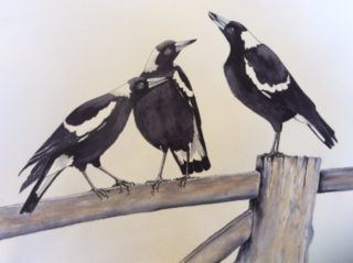 A Watercolour artwork by Helen De Jonge in the Realist style  depicting Birds with main colour being Black Blue and White and titled What's Happening