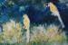Angela Iliadis-Twin Birds