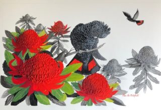 A Mixed Media painting by Ellen Lee Osterfield in the Realist style  depicting Birds with main colour being Black Red and White and titled Red tailed black cockatoo with Red Waratah