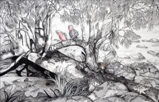 A Mixed Media painting by Ellen Lee Osterfield Birds and titled Barnadown Rapids