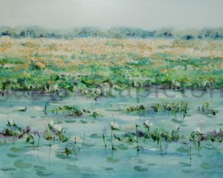An Acrylic painting by Janis Stapleton depicting Landscape Swamp and Water with main colour being Blue Green and Ochre and titled White Lilies Yellow Waters Billabong