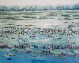 An Acrylic painting by Janis Stapleton depicting Landscape Flowers Swamp and Water with main colour being Blue Green and Grey and titled Lilies in the Mist Kakadu