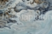 Janis Stapleton-85-Kimberley Coast-OzArt Finder (002)-b50163a6
