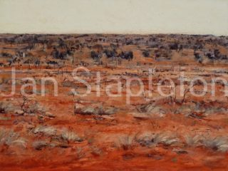 A Mixed Media artwork by Janis Stapleton depicting Landscape Outback with main colour being Grey Olive and Red and titled Mulga Spinifex Halls Creek WA